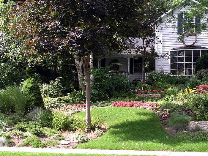 Suburban Backyard Landscaping : Figure 1 A typical suburban front yard The Suburban Savanna